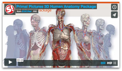 Human Anatomy Package