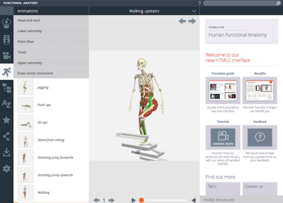 Primal Pictures 3D Human Functional Anatomy New User Interface ...