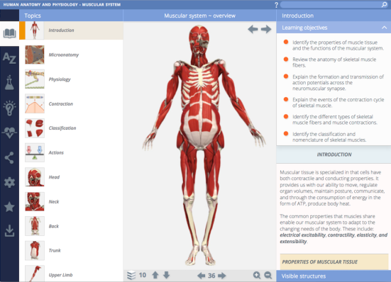Primal Pictures 3D Human Anatomy & Physiology New User Interface ...