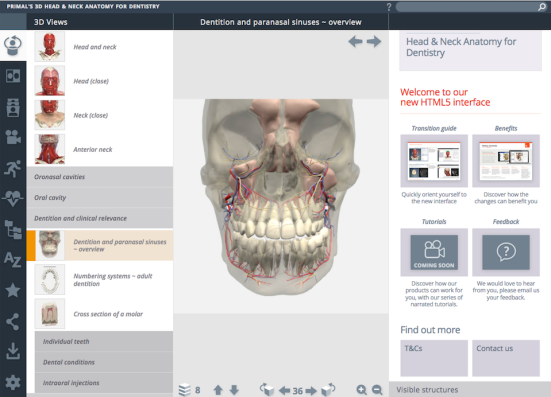 Primal Pictures 3D Human Head and Neck Anatomy for Dentistry New ...