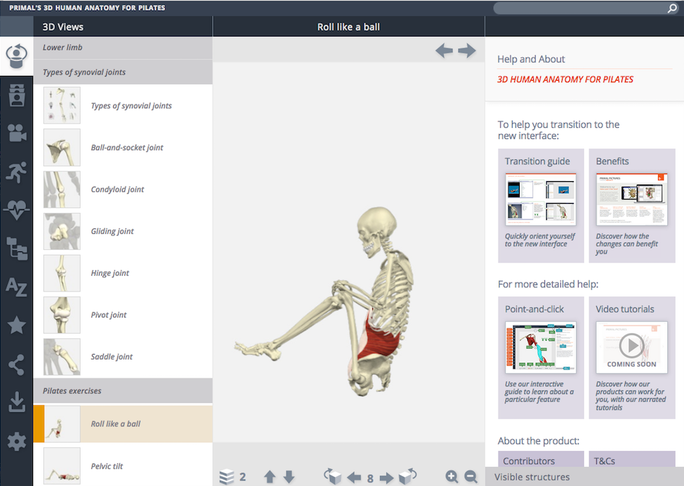 Primal Pictures 3D Human Anatomy for Pilates New User Interface ...