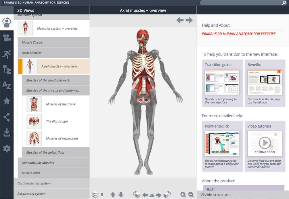Primal Pictures 3D Human Anatomy for Exercise New User Interface ...
