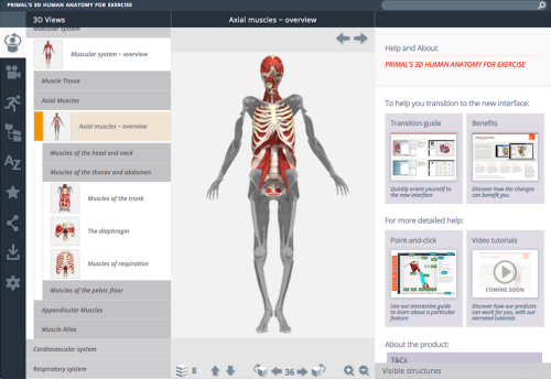 3d human anatomy for exercise.png