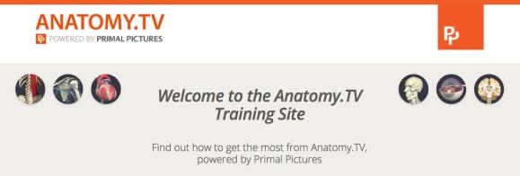 primal training copy