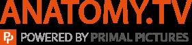 Anatomy-TV-logo-large.png